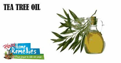 Home Remedies For Pimples: Tea Tree Oil