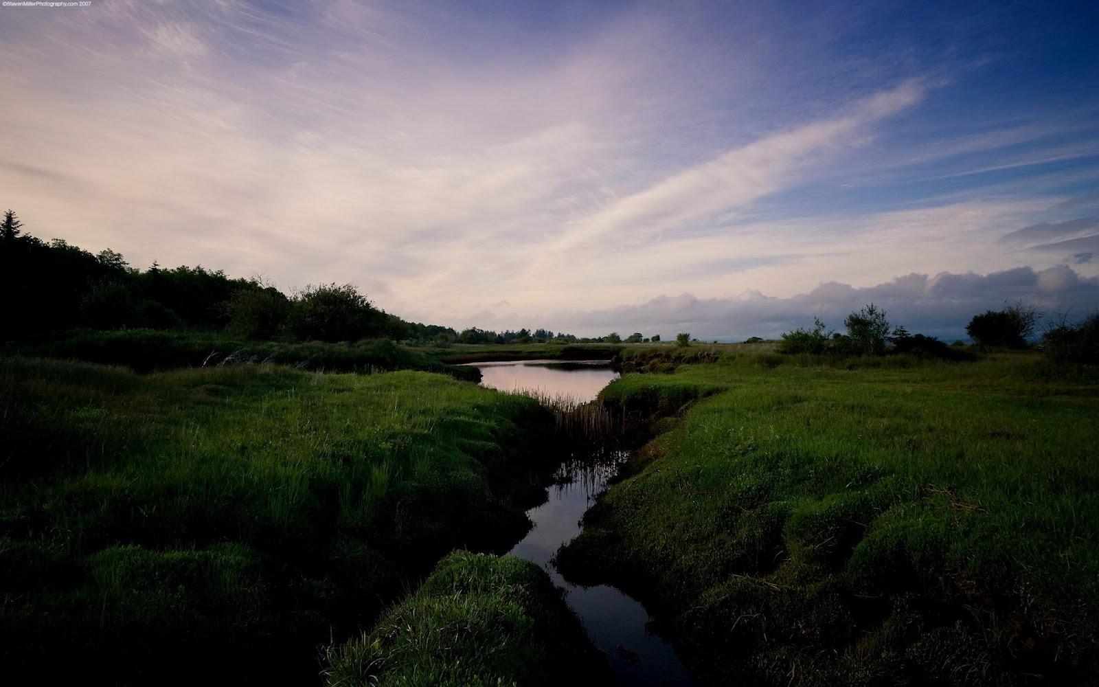 amazon nature wallpaper - photo #18