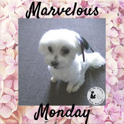 Marvelous Monday with Lexi: July 1st Edition!
