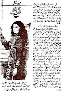 Aur Phir.. By Shabina Gull Urdu Afsana Free Download Pdf
