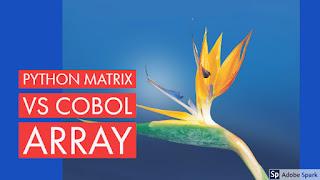 python matrix