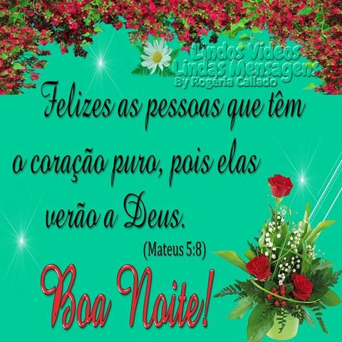 Felizes as pessoas que têm  o coração puro, pois elas   verão a Deus.  (Mateus 5:8)  Boa Noite!
