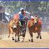 Lestarikan Olahraga Tradisional Asli Indonesia