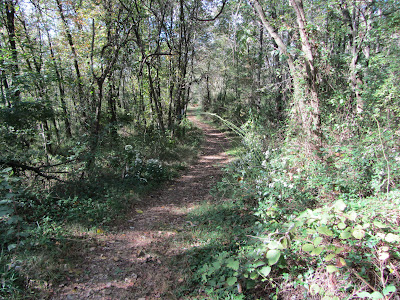 Kelly's Run Trail between the field and access road