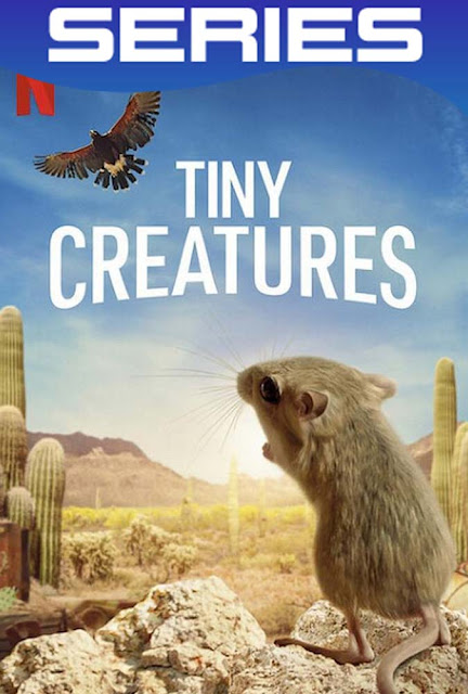 Tiny Creatures Temporada 1 Completa HD 1080p Latino