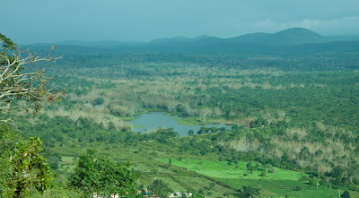 Clear Car Rental Official Blog: Bandipur National Park a mesmerizing and enchanting place