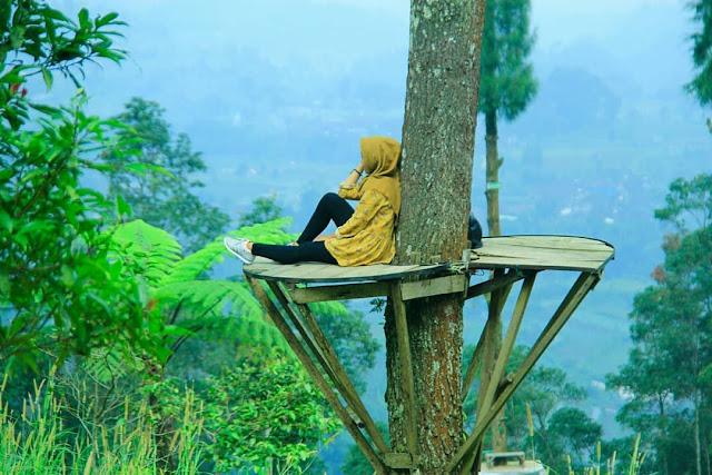 Tiket Masuk Dan Lokasi Bukit Grenden Pakis Magelang
