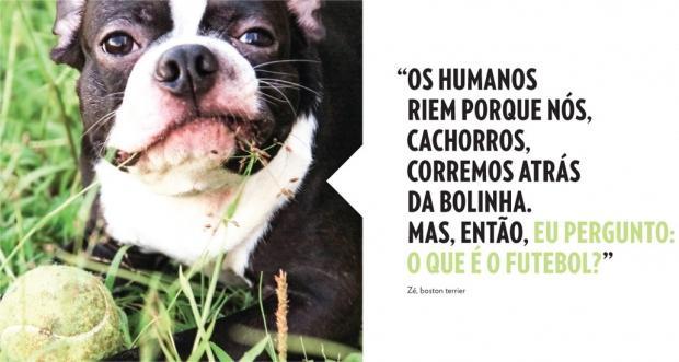 Essa Mensagem Vale A Pena Ver Cães X Pessoas Que Se Acham