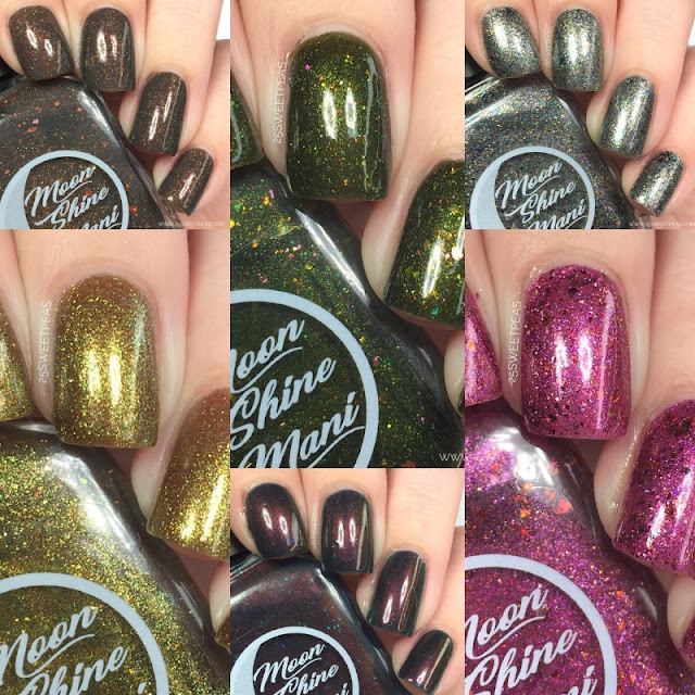 Moon Shine Mani What Is Your Favorite Color? Collection