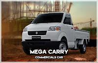 MEGA CARRY
