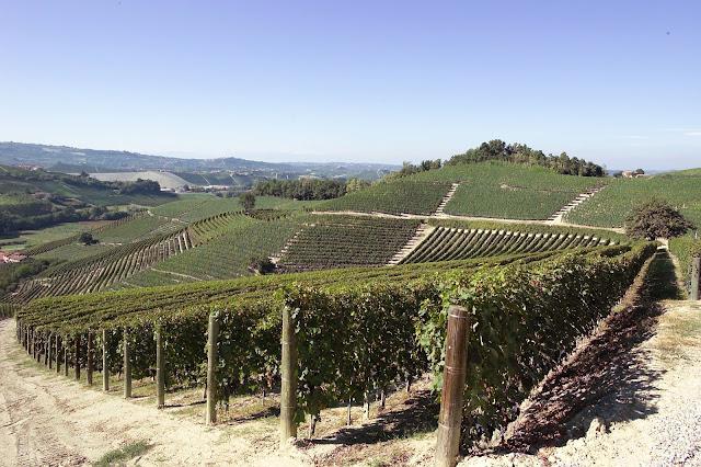 Ascheri Barolo Sorano in Piedmont