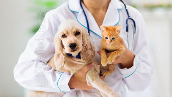 projeto criminaliza exercicio ilegal veterinaria direito