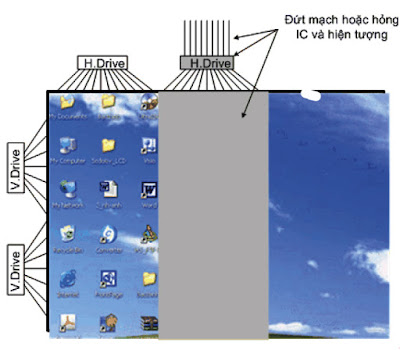 Hình 17 - Hiện tượng của màn hình khi bị hỏng IC- H.Drive hoặc đứt mạch đưa tín hiệu đến IC