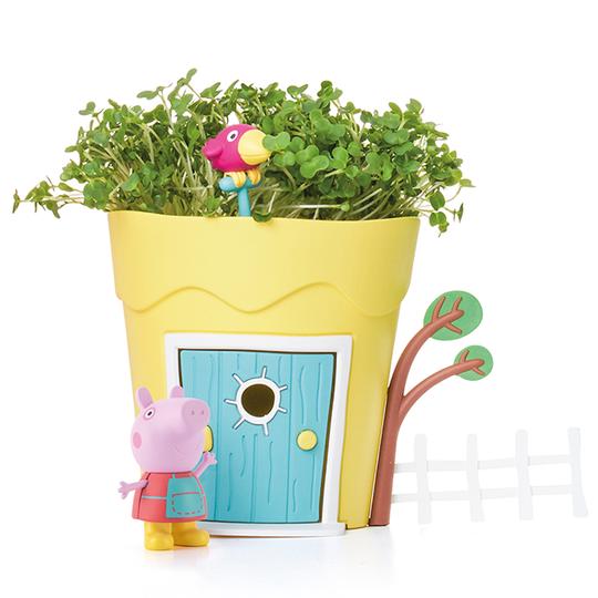 Peppa plant