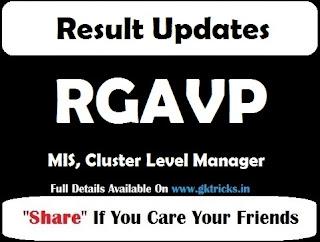 RGAVP MIS, Cluster Level Manager Result