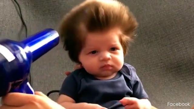 Cómo tener el pelo abundante y largo