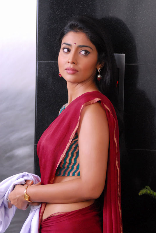 South Indian Actress Shirya Stills Hot Hip Navel Show Stills In Maroon Saree