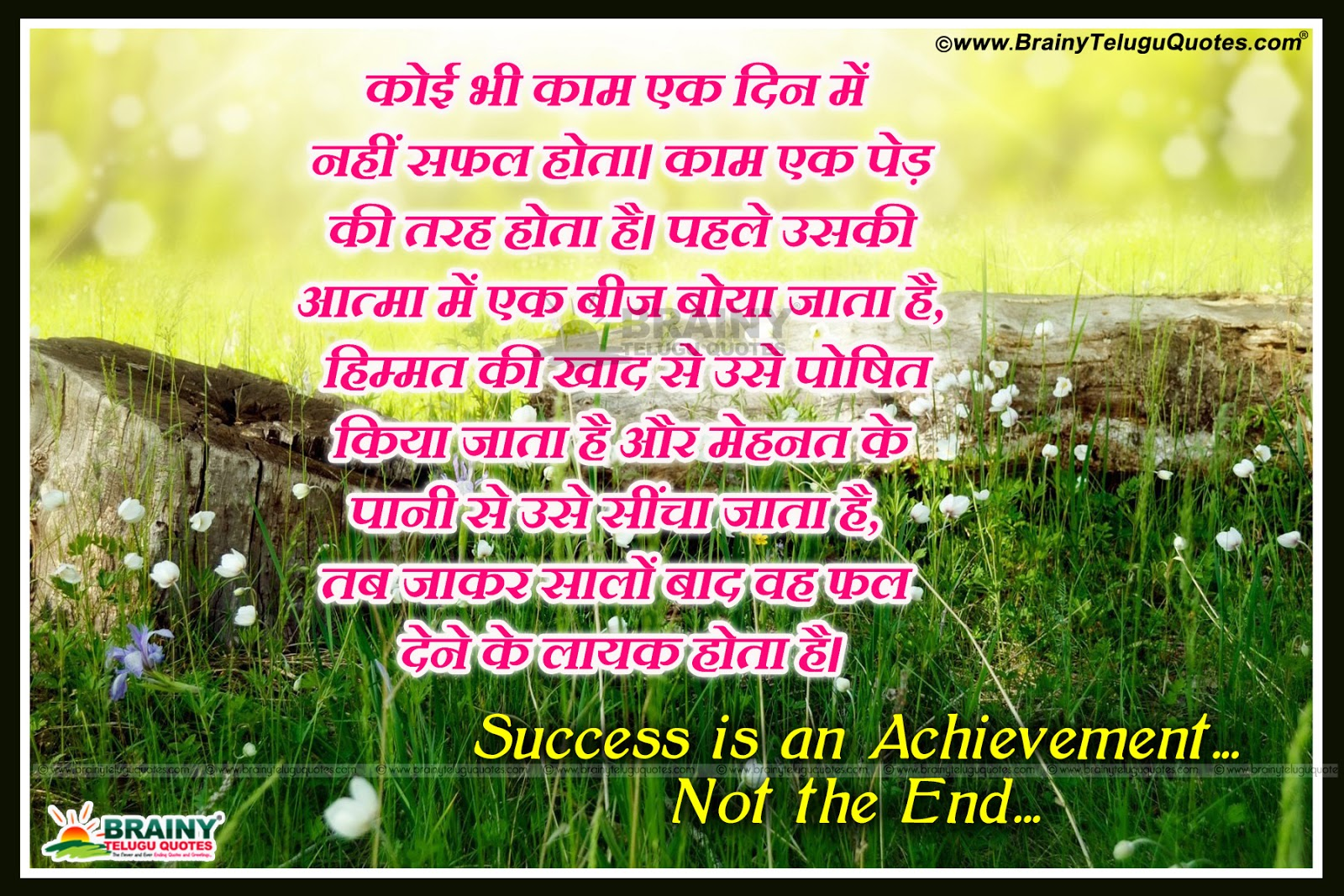 success quotes in hindi-inspirational success quotes in