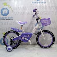 Sepeda Anak Evergreen Maximus