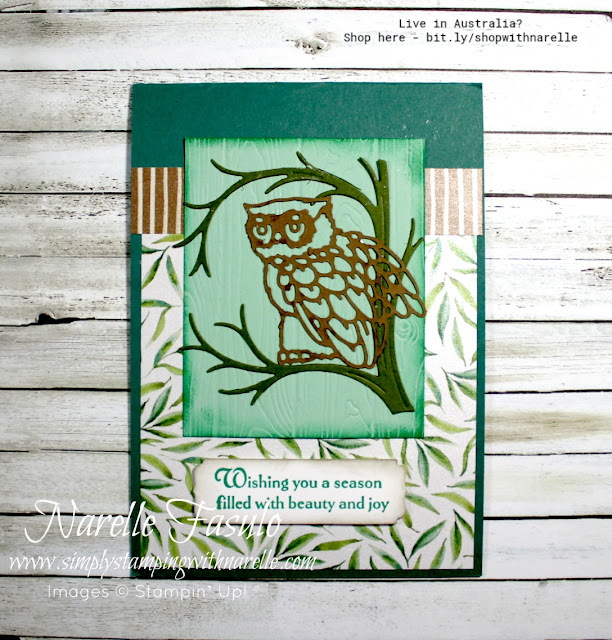 Love Owls? Then you are going to love the new Still Night Bundle. See it here - http://bit.ly/StillNight
