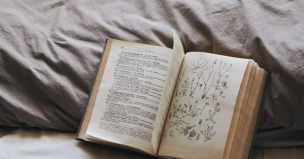 FOTOSZINTÉZIS: Legjobb önsegítő könyvek