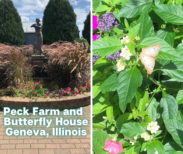 Surrounded By Fluttering Butterflies at Peck Farm in Geneva, Illinois