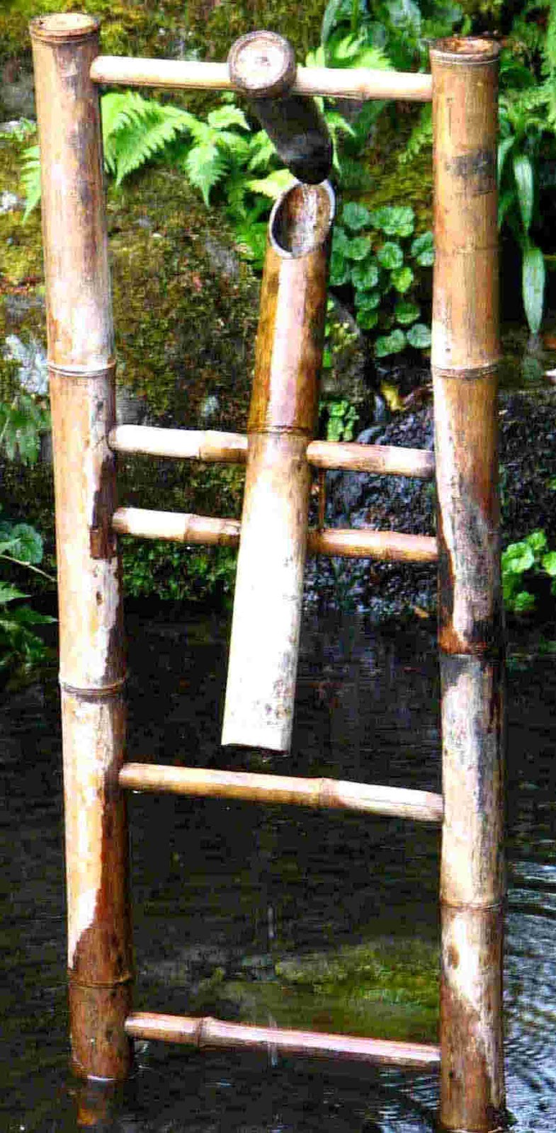 Bamboo Grove Photo Bamboo Fountain