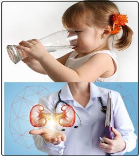 manfaat air putih bagi ginjal