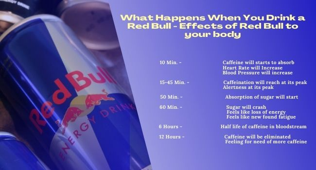 What happens when you drink a Red Bull – Effects of Red Bull to your body