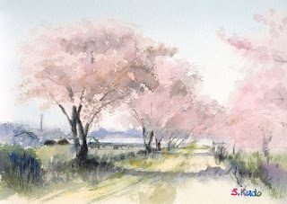 水彩スケッチ 桜 Cherry Blossoms Watercolor Sketch