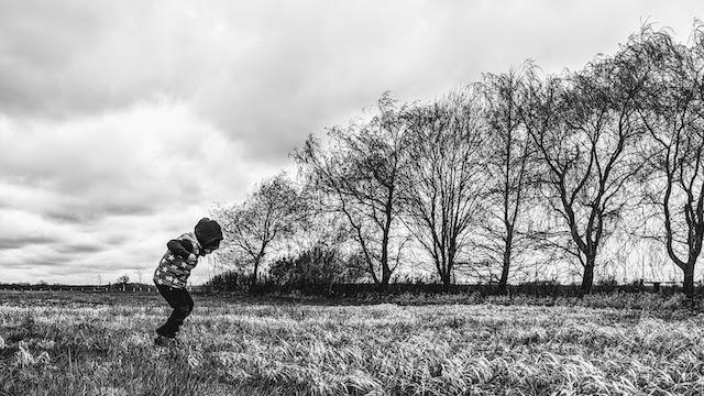 Groß werden, Foto vom Autor (CC BY 3.0 DE)