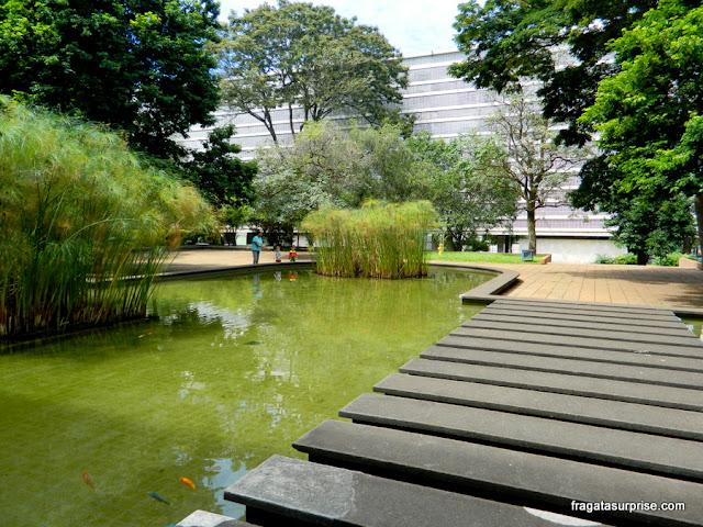 Papiros no espelho d'água em jardim de Burle Marx na Quadra 308 Sul de Brasília