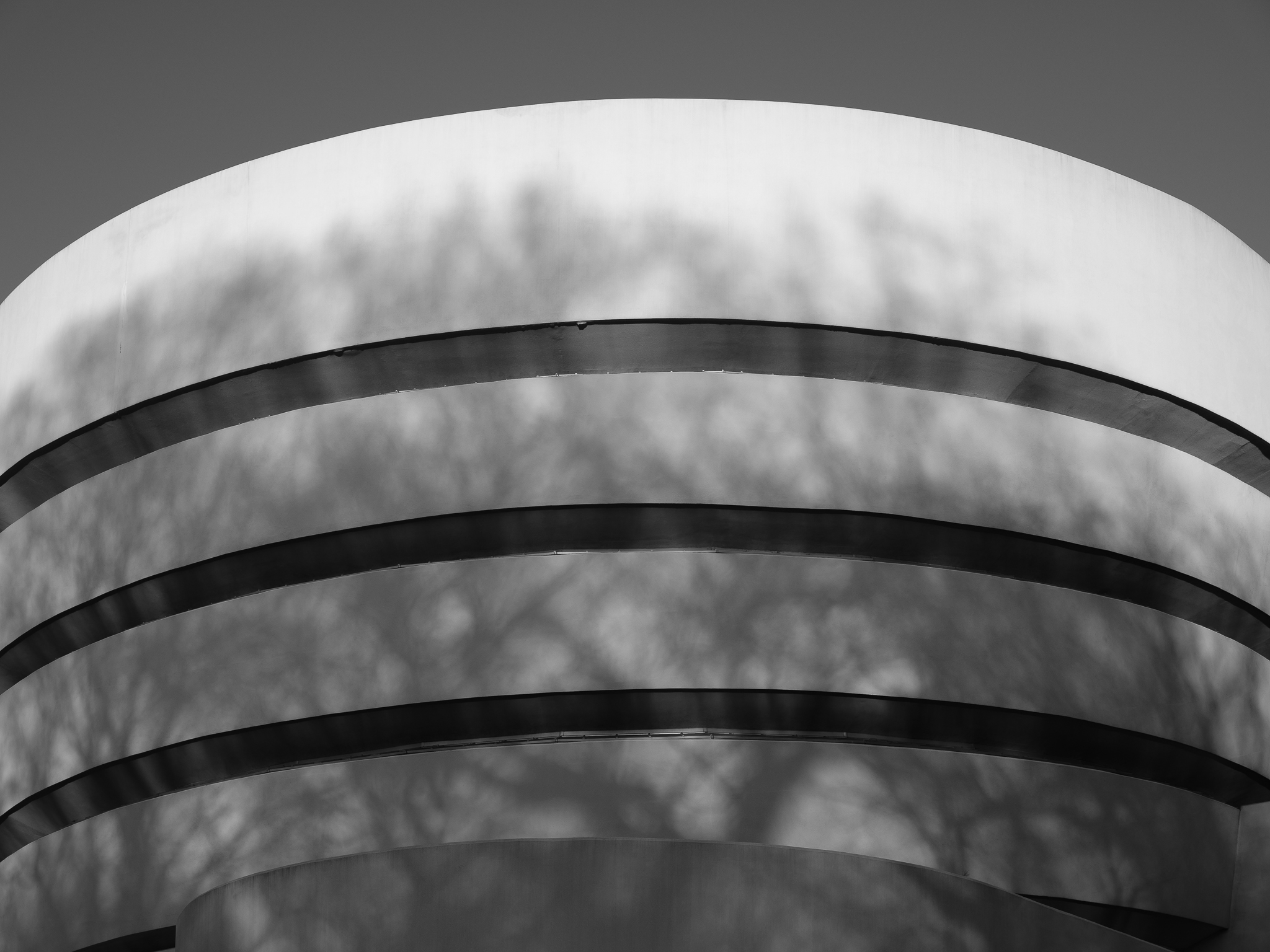 A black and white photo of the guggenheim museum in new york fujifilm gfx 100s