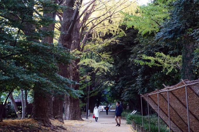 Kokemuksia Tokion nähtävyyksistä ja yksinmatkailusta - vinkkejä matkalle ja aukioloaikoihin / Shinjuku Guyen