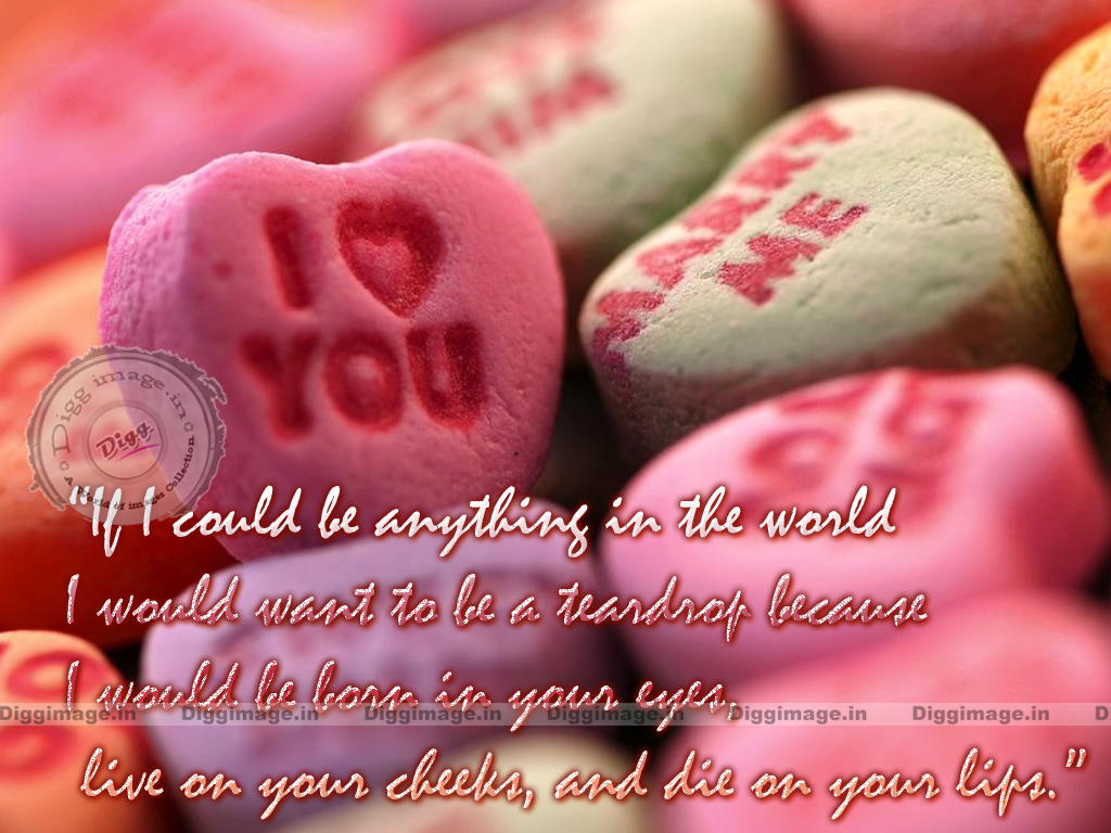 Valentines Day Quotes 2016 -new Latest Pictures