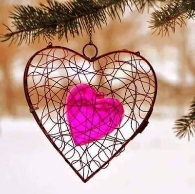 قصائد واشعار للمبدع متولي عيسي الحُبَ نورٌ - الشرنقة - قلبي اِنفطرَ