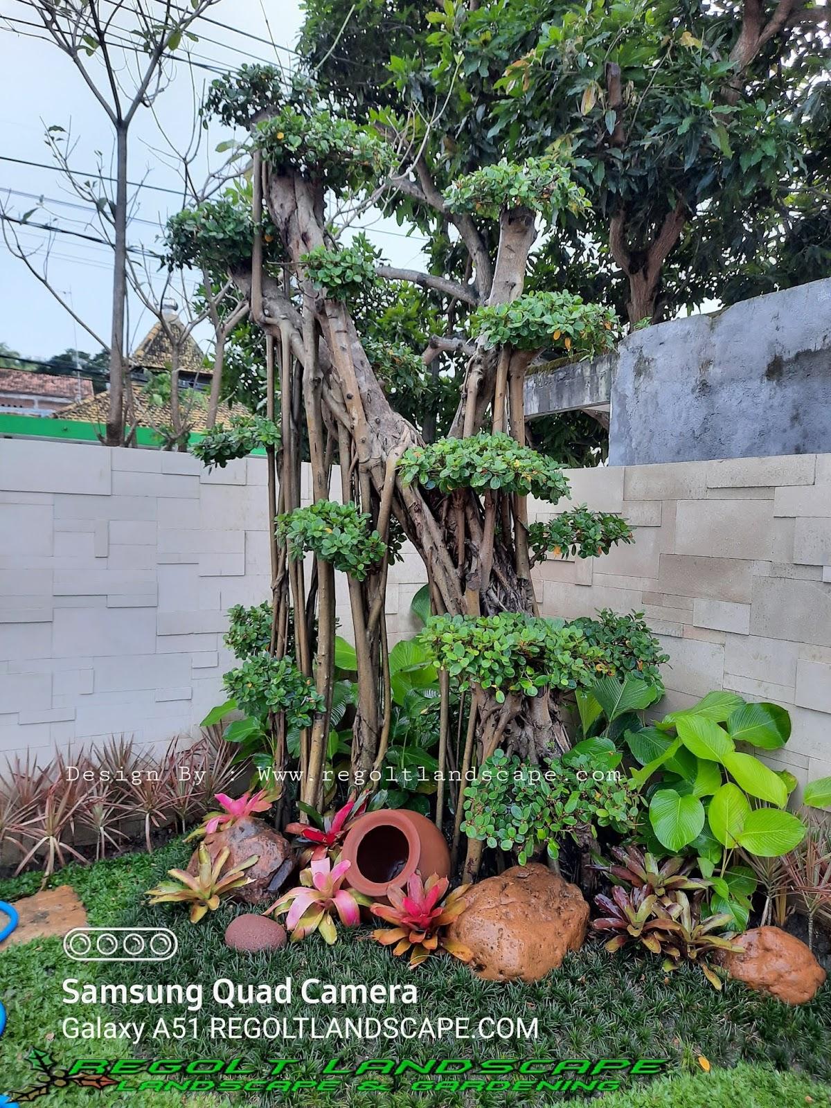 Tukang Taman Jakarta Timur - Barat - Selatan - Utara - Pusat
