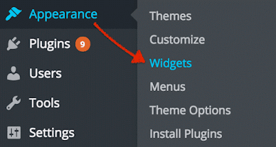 WorPress Widget Function