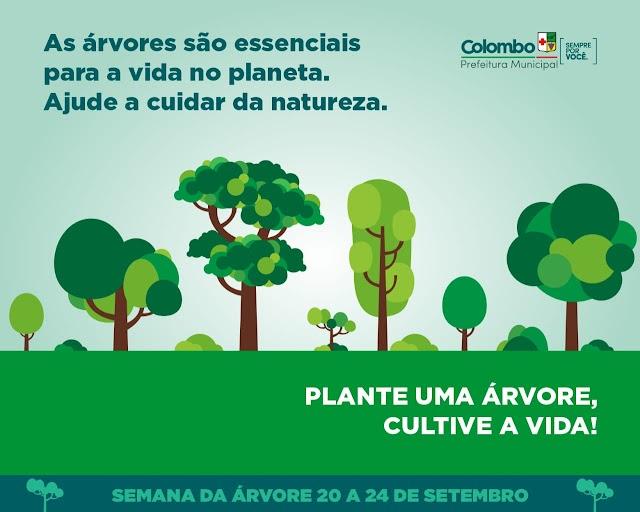 Meio Ambiente promove Semana da Árvore do dia 20 a 24 de setembro