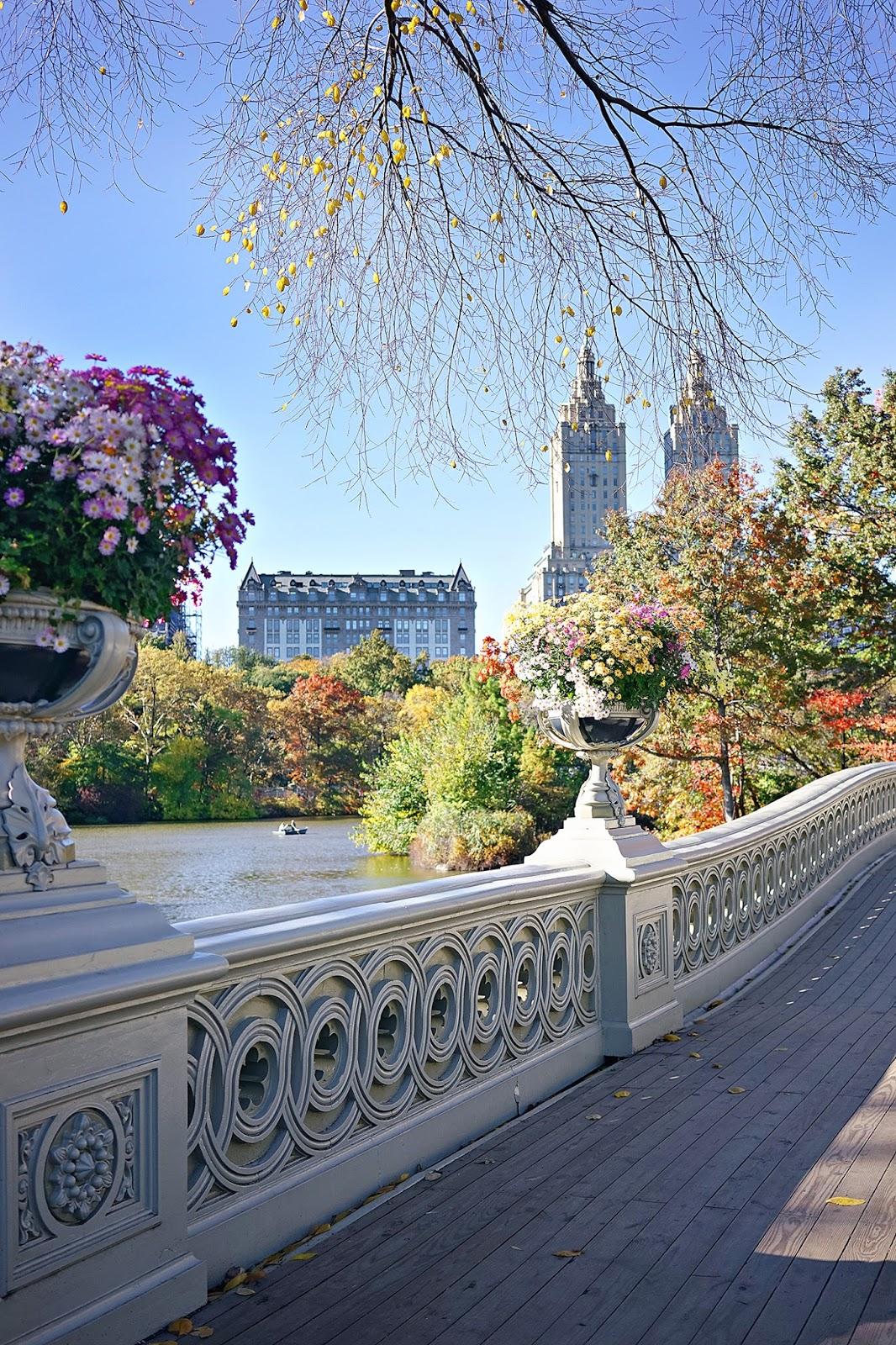 Bow Bridge, Central Park, New York City, Fall