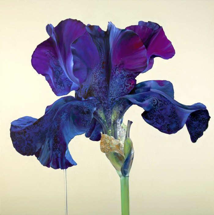 Рисунки цветов. Carmelo Blandino 21