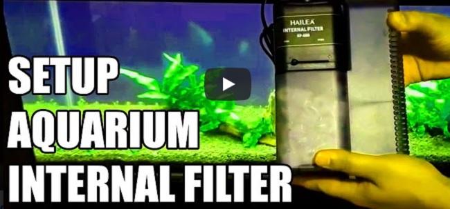 How to setup tank internal filter
