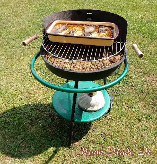 Griller-Hauswurztopf-Vogelbad-Kombination/barbecue grill-houseleek-birdbath-combination