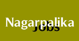 Borsad Nagarpalika Recruitment for Apprentice Posts 2019