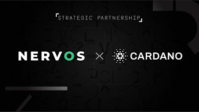 Nervos and Cardano Launch Research Initiative to Enhance Smart Contract Security