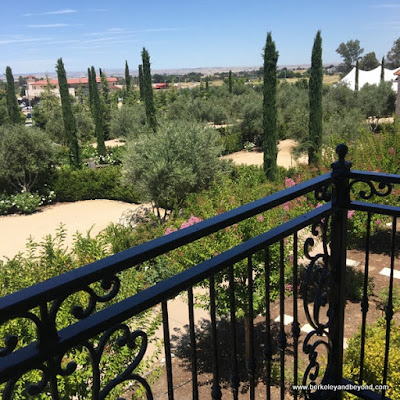 view from guest room balcony at Allegretto Vineyard Resort in Paso Robles, California