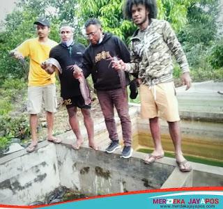 Agar Fokus Belajar Mahasiswa Papua Jateng di beri pelatihan ternak lele
