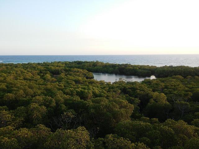 Apo Reef Island Lagoon Sablayan
