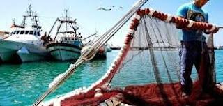 الصيد البحري وتربية المائيات