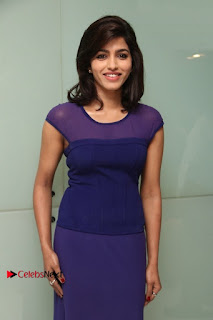 Tamil Actress Dhansika Stills in Purple Long Dress at Simba Audio Launch  0011.jpg